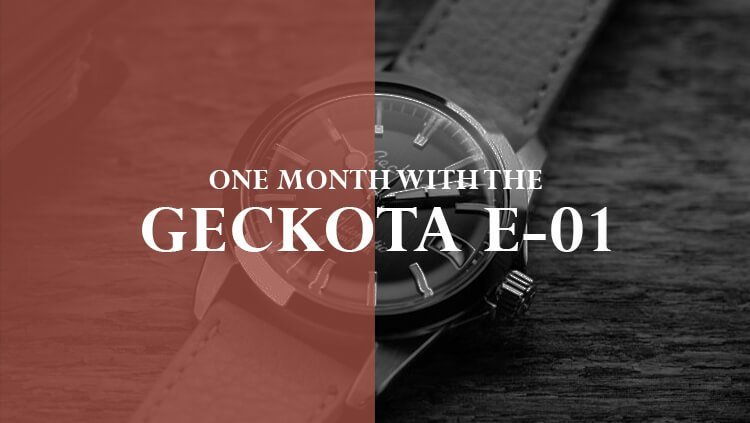 One Month with the Geckota E-01